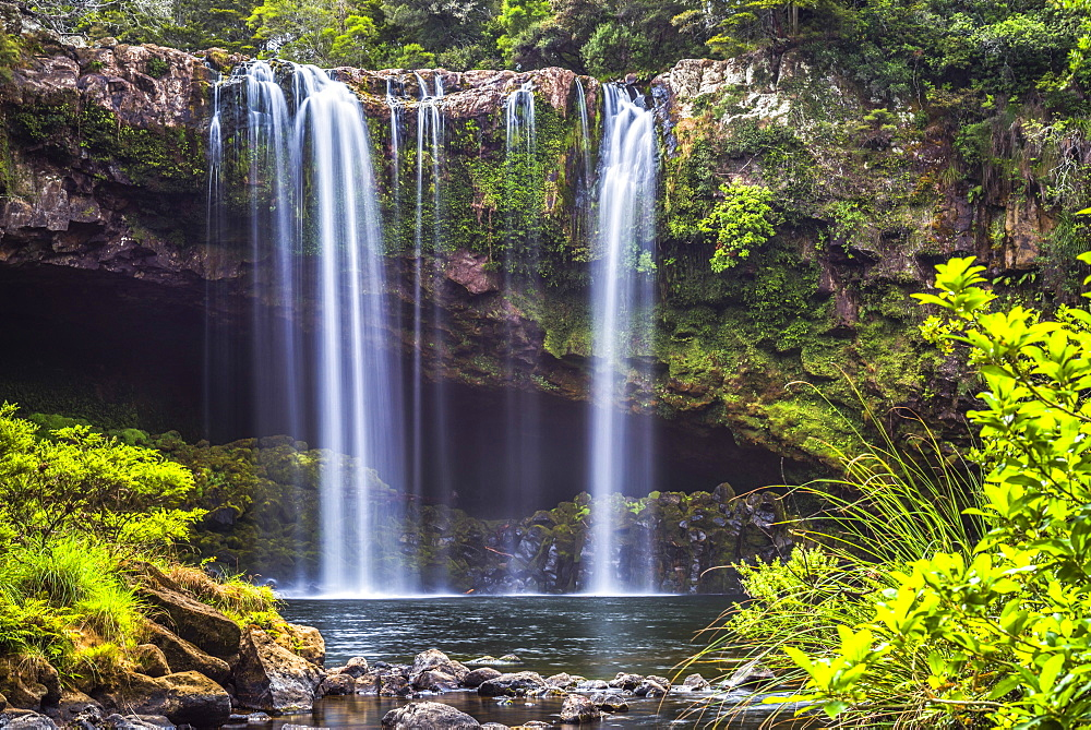 Rainbow Falls, a waterfall at Kerikeri in the Bay of Islands, Northland Region, North Island, New Zealand, Pacific