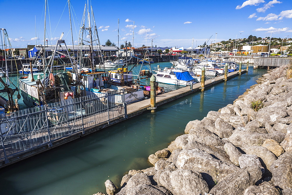 Sailing boats in Napier Harbour, Hawkes Bay Region, North Island, New Zealand, Pacific