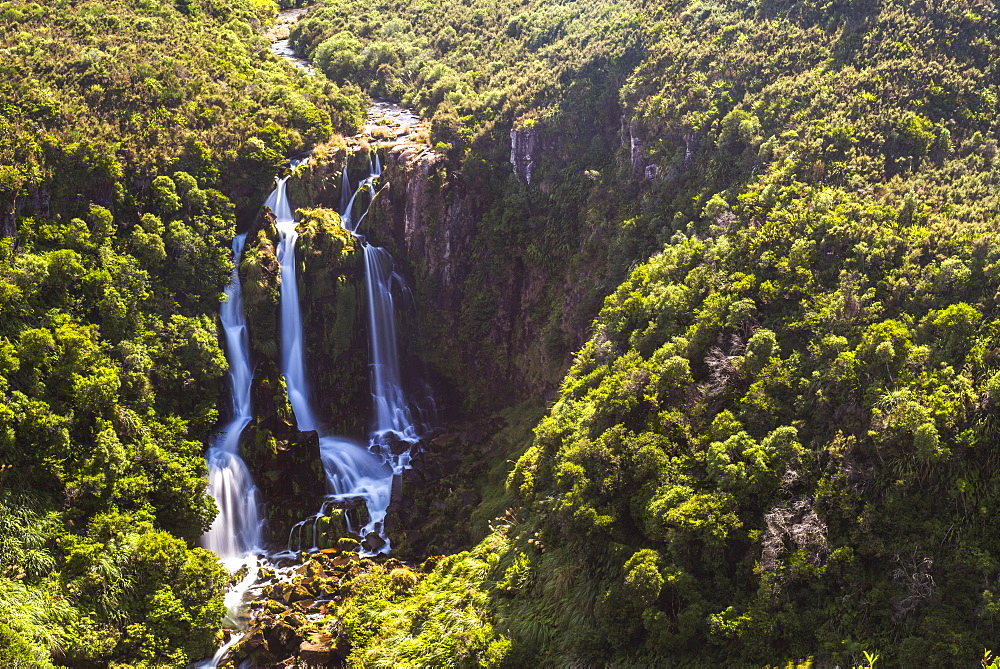 Waipunga Falls, a waterfall of the Waipunga River near Taupo, Waikato Region, North Island, New Zealand, Pacific
