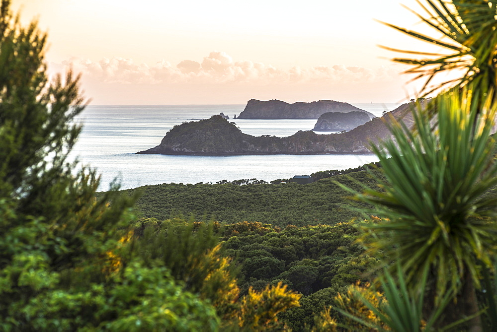 Bay of Islands coastline at sunrise, seen from Russell, Northland Region, North Island, New Zealand, Pacific