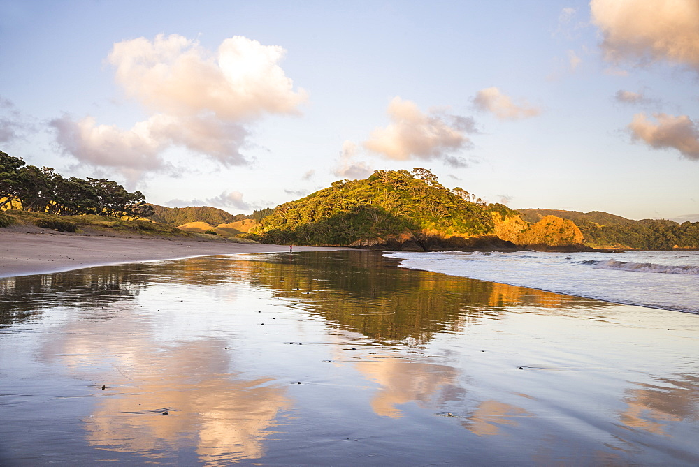 Otamure Bay at sunrise, Whananaki, Northland Region, North Island, New Zealand, Pacific