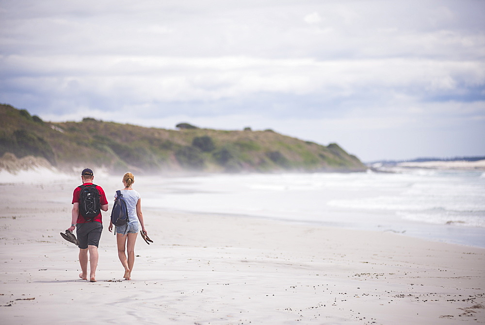 Tourists walking on Rarawa Beach, a popular and beautiful white sand beach in Northland Region, North Island, New Zealand, Pacific