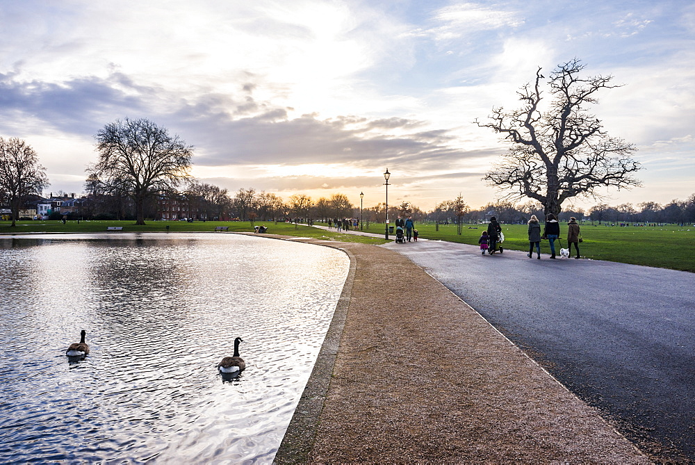 Lake, Clapham Common at sunset, Lambeth Borough, London, England, United Kingdom, Europe