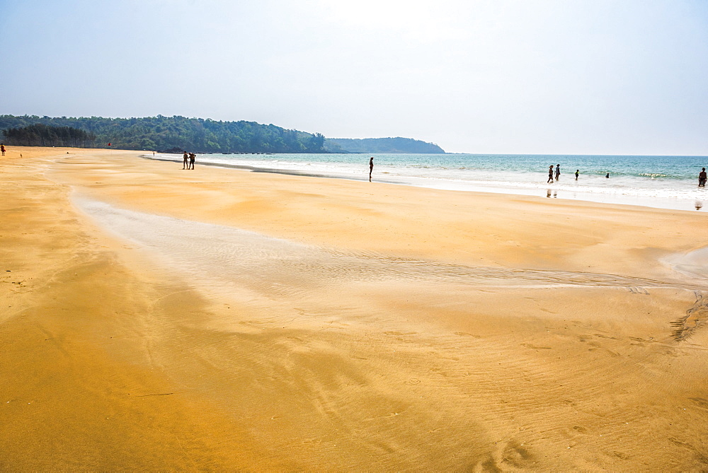 Galgibag Beach, South Goa, India