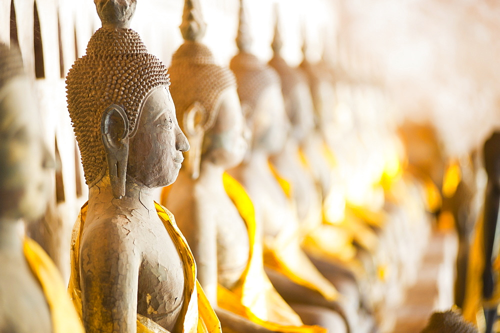 Buddhas at Wat Si Saket, the oldest temple in Vientiane, Laos, Indochina, Southeast Asia, Asia - 1109-376