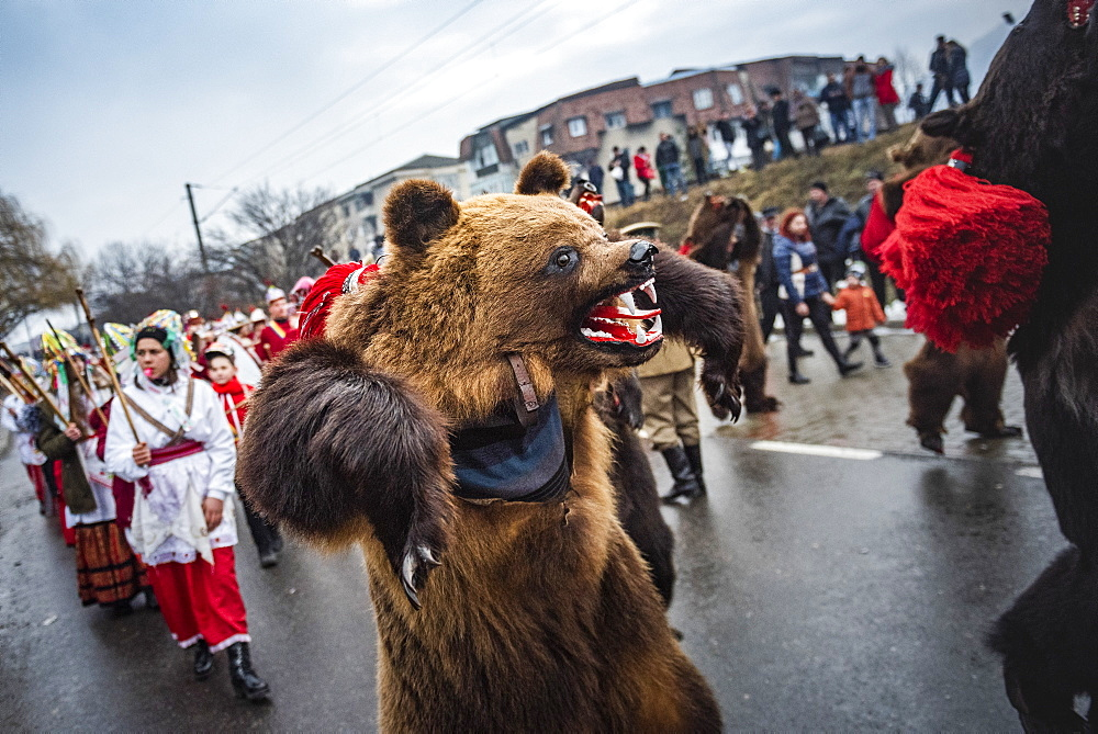 New Year Bear Dancing Festival, Comanesti, Moldova, Romania