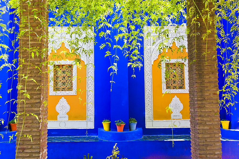 Majorelle Gardens (Gardens of Yves Saint-Laurent), Marrakech, Morocco, North Africa, Africa