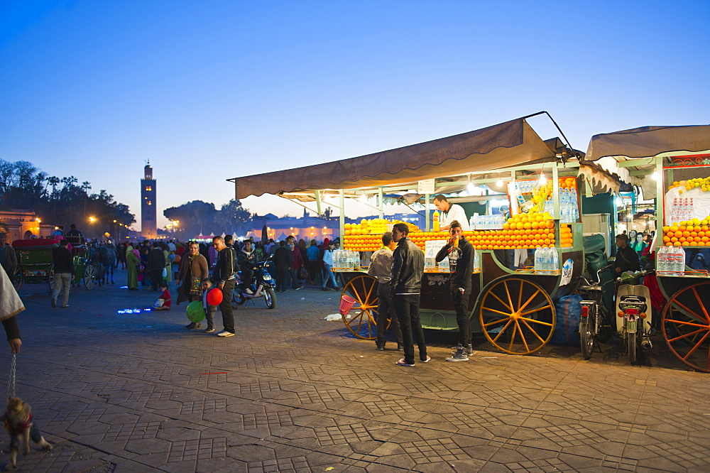 Fresh orange juice stall at night, Place Djemaa El Fna, Marrakech, Morocco, North Africa, Africa