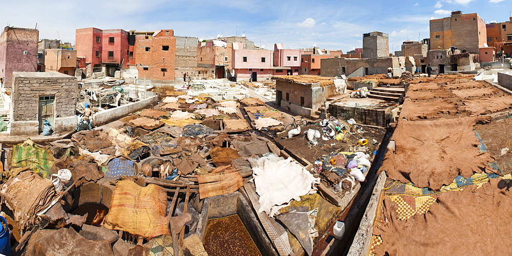 Tannery in Old Medina, Marrakech, Morocco, North Africa, Africa