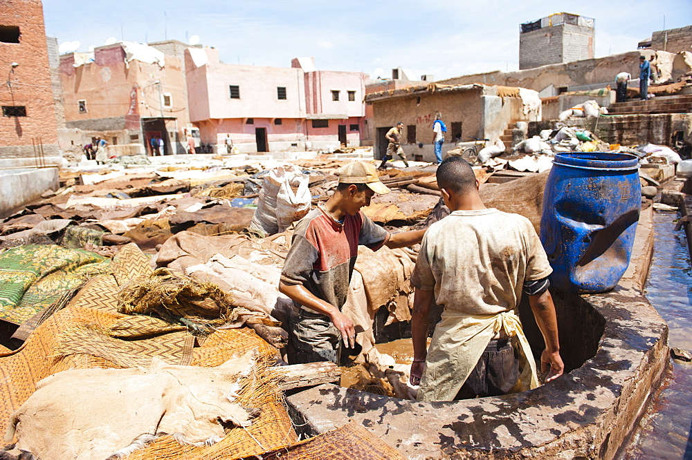 Men working at a tannery in Old Medina, Marrakech, Morocco, North Africa, Africa