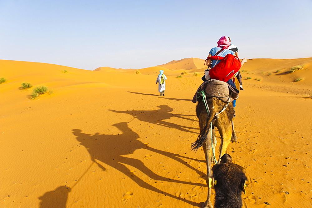 Erg Chebbi Desert, Sahara Desert near Merzouga, Morocco, North Africa, Africa
