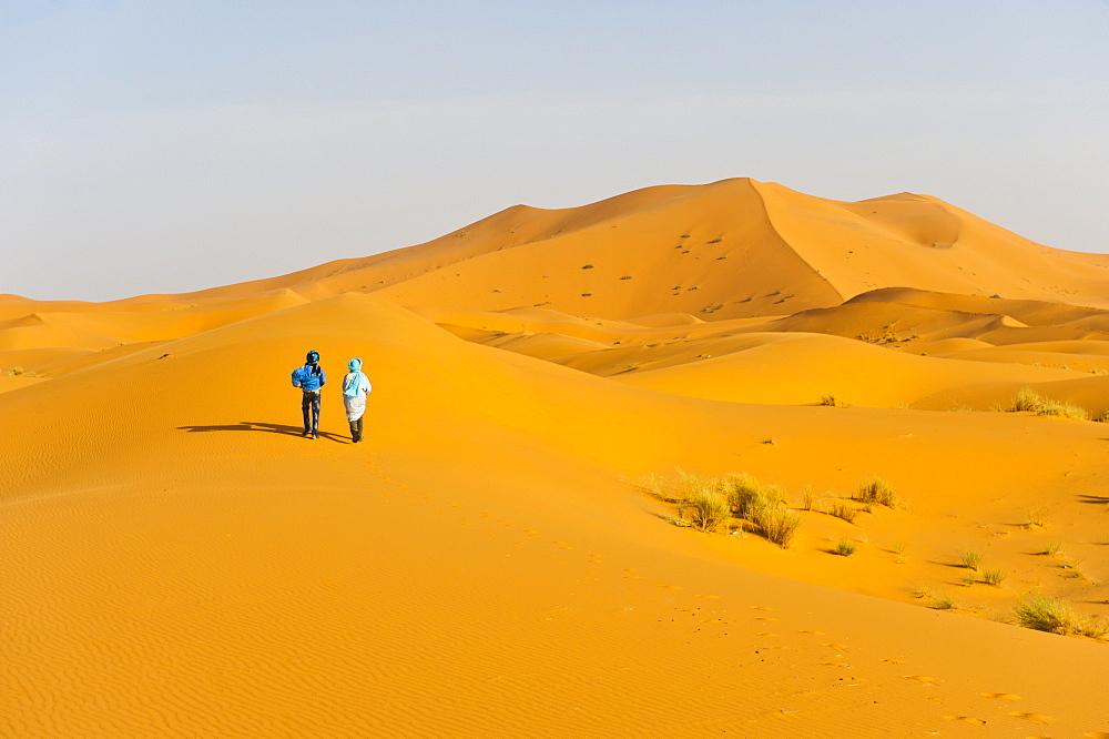 Two Berber men walking in the sand dunes of Erg Chebbi Desert, Sahara Desert near Merzouga, Morocco, North Africa, Africa