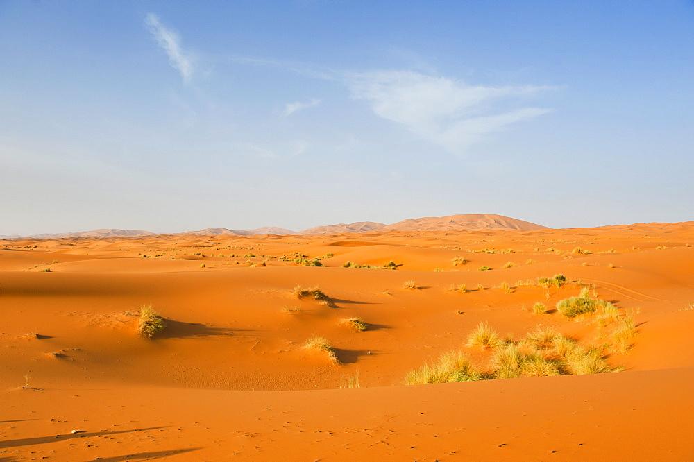 Sand dune landscape at Erg Chebbi Desert, Sahara Desert near Merzouga, Morocco, North Africa, Africa