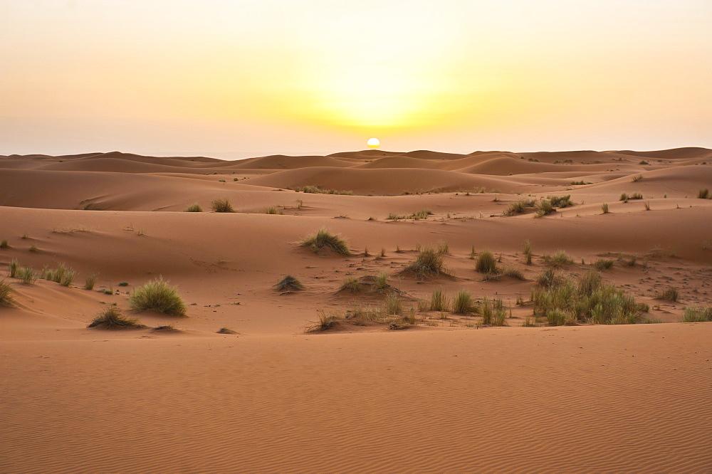 Erg Chebbi dunes at sunrise, Sahara Desert near Merzouga, Morocco, North Africa, Africa