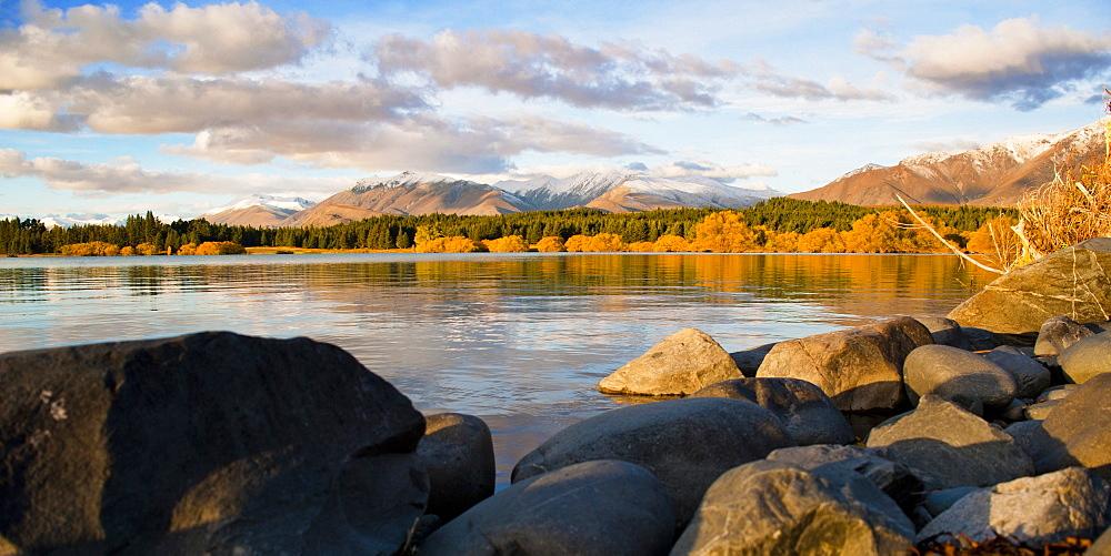 Lake Tekapo autumn colours at sunset, Southern Lakes, Canterbury Region, South Island, New Zealand, Pacific