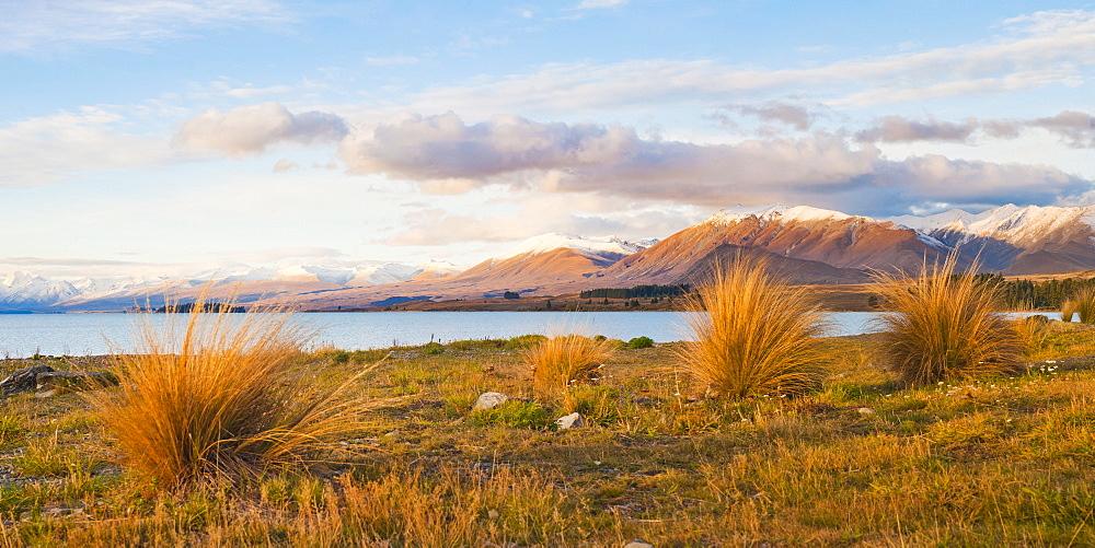 Lake Tekapo at sunset, Southern Lakes, Canterbury Region, South Island, New Zealand, Pacific