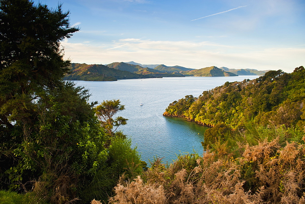 View of a sailing boat in the Queen Charlotte Sound, South Island, New Zealand, Pacific