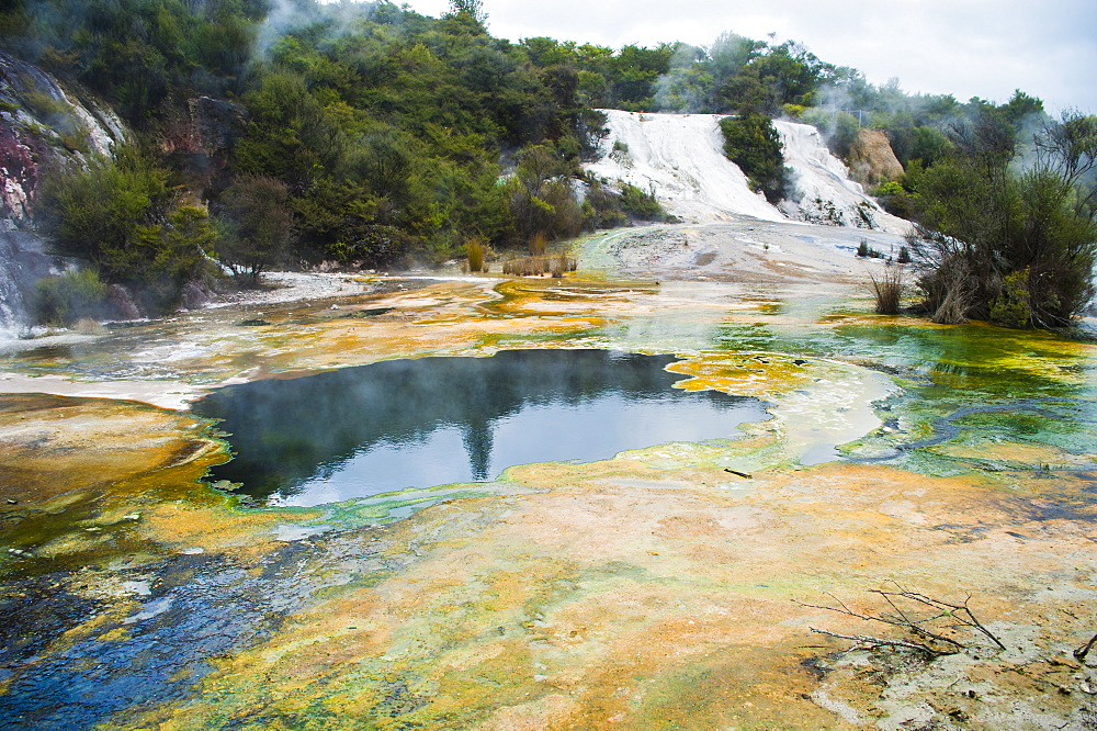 Artist's Palette and Rainbow Terrace at Orakei Korako Thermal Park, The Hidden Valley, North Island, New Zealand, Pacific