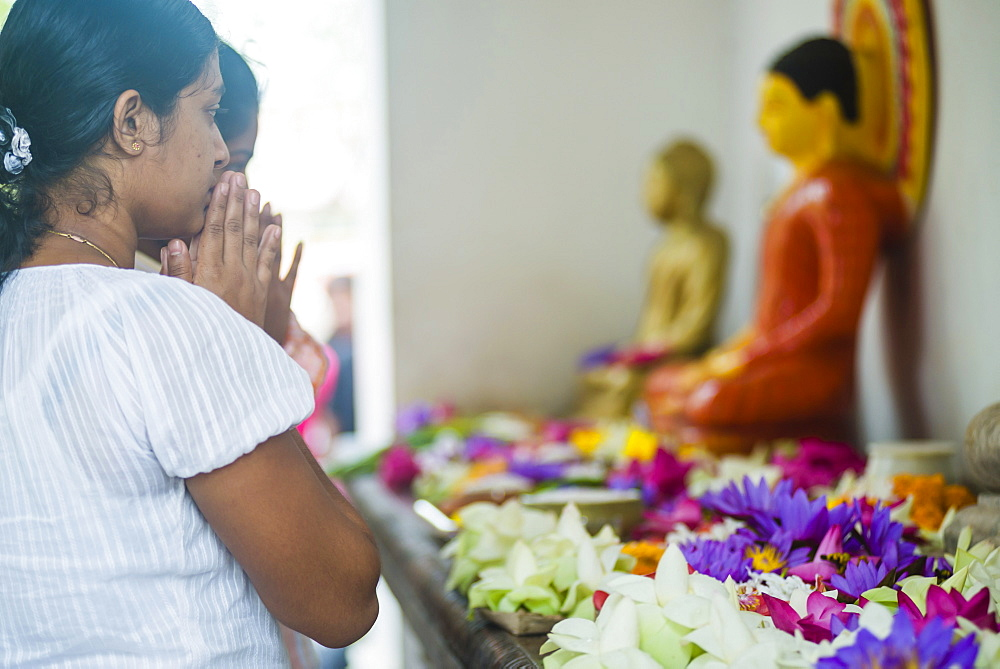Buddhist woman praying at Sri Maha Bodhi in the Mahavihara (The Great Monastery), Anuradhapura, Sri Lanka, Asia