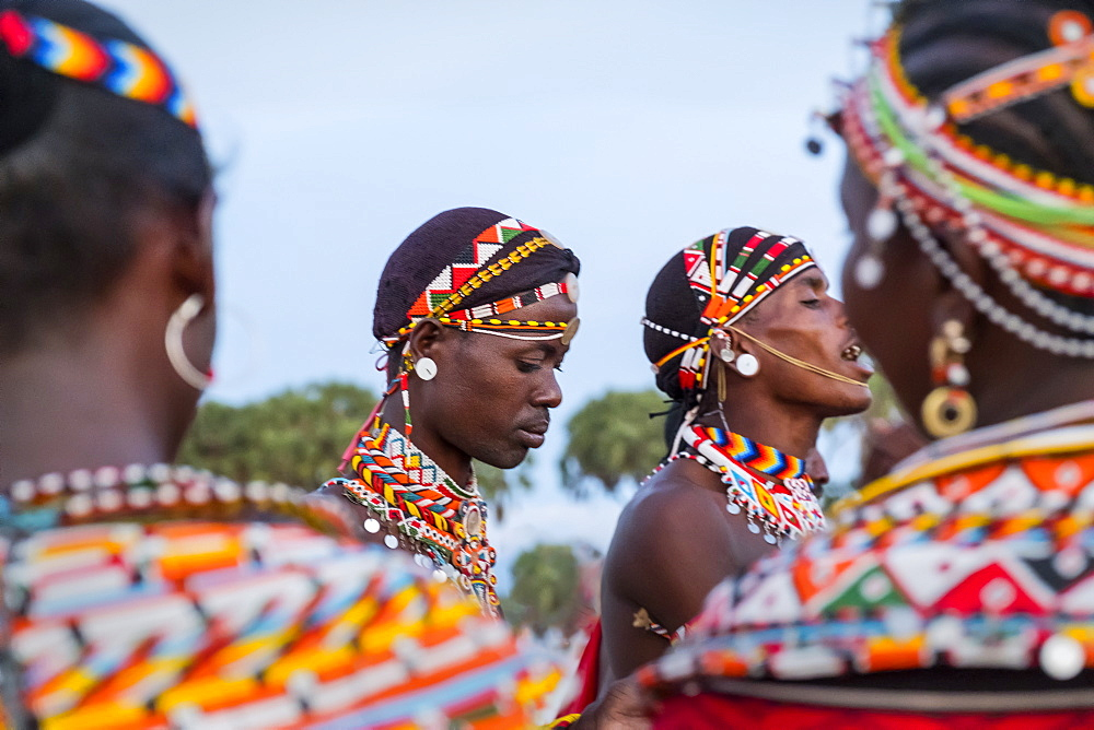 Portrait of Samburu tribe members dancing the traditional wedding dance at dusk, Kenya, East Africa, Africa - 1111-38