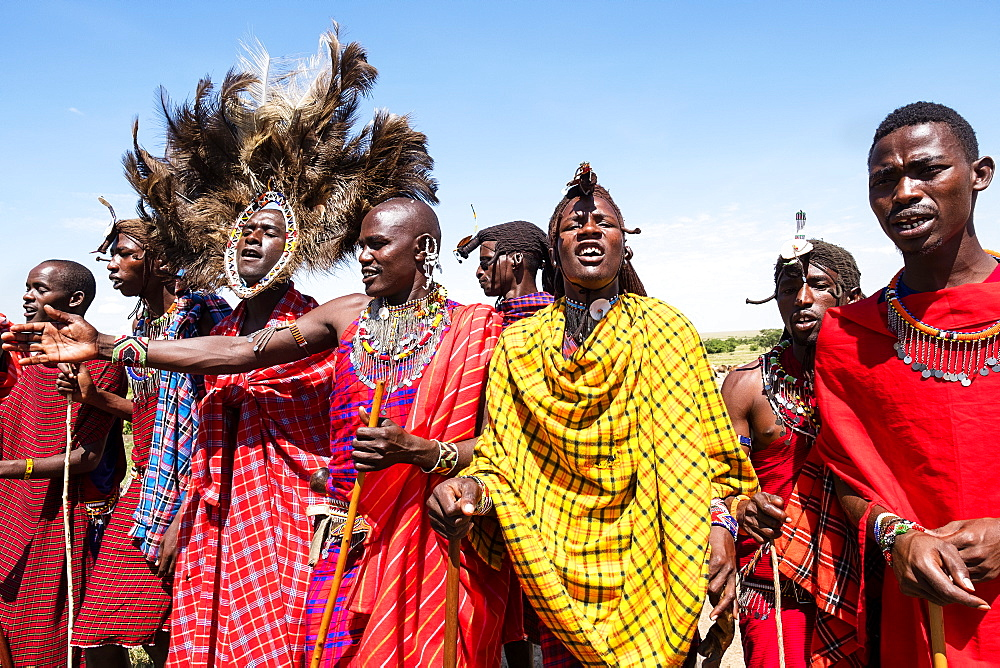 Masai Mara members sing tribal songs to greet guests to their village, Masai Mara National Reserve, Kenya, East Africa, Africa - 1111-8