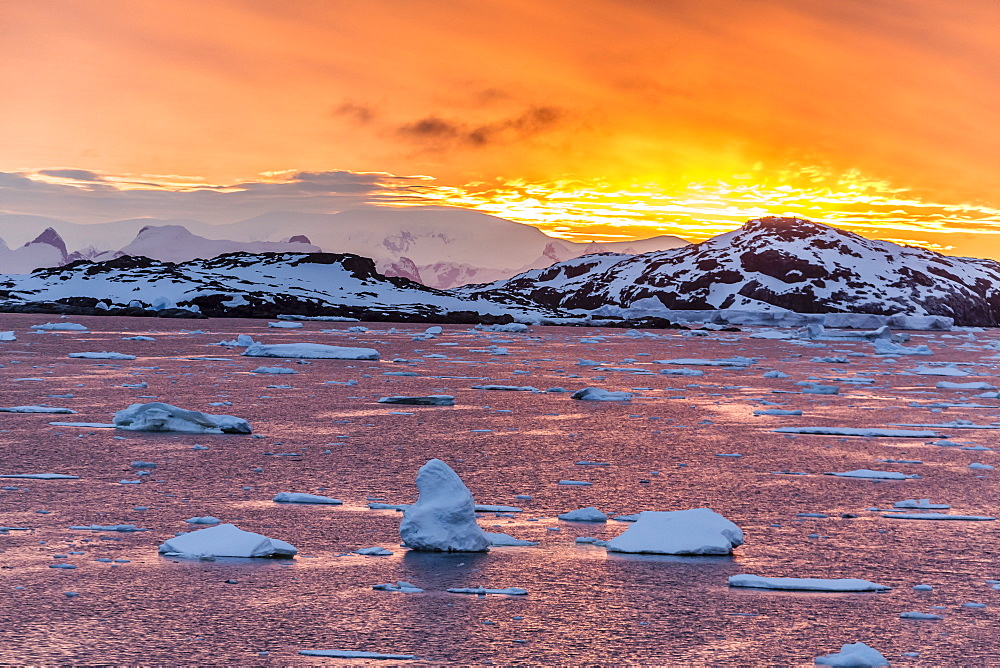 Sunset over ice floes and icebergs, near Pleneau Island, Antarctica, Southern Ocean, Polar Regions - 1112-1069