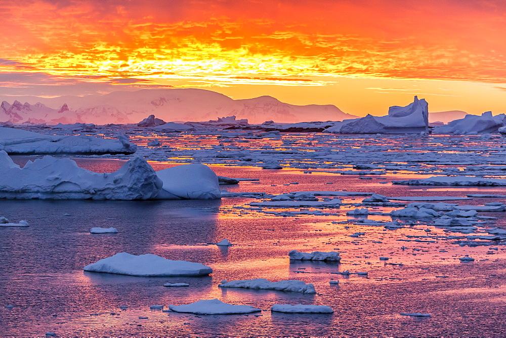 Sunset over ice floes and icebergs, near Pleneau Island, Antarctica, Southern Ocean, Polar Regions - 1112-1072