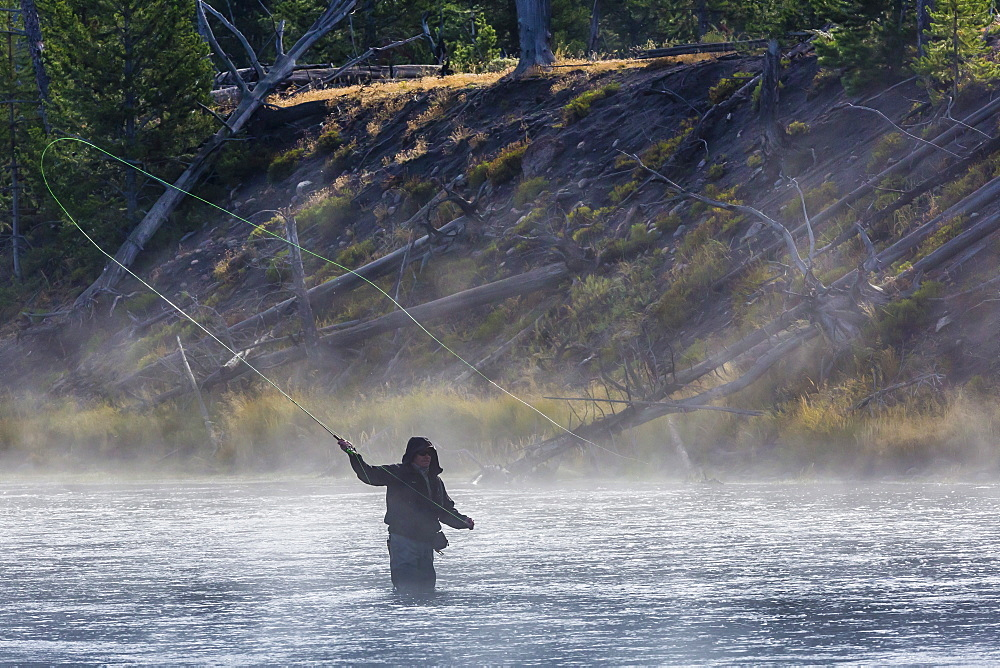 Fly fisherman casting in the early morning fog in the Madison River, Yellowstone National Park, UNESCO World Heritage Site, Wyoming, United States of America, North America