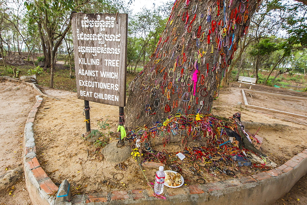 Killing Tree at the Killing Fields of Choueng Ek, child victims under the Khmer Rouge, Phnom Penh, Cambodia, Indochina, Southeast Asia, Asia
