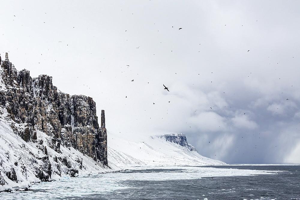 Snow storm approaching Alkefjelet, Cape Fanshawe, Spitsbergen, Svalbard, Norway, Scandinavia, Europe
