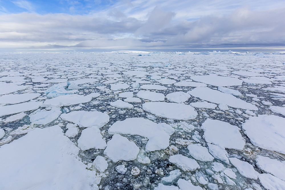 Ice floes choke the waters of the Lemaire Channel, Antarctica, Polar Regions