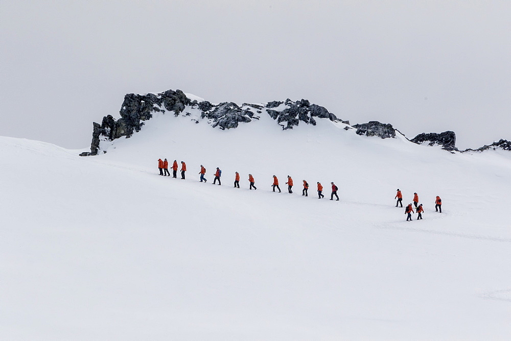 Lindblad Expeditions guests from the National Geographic Explorer hiking at Orne Harbor, Antarctica, Polar Regions