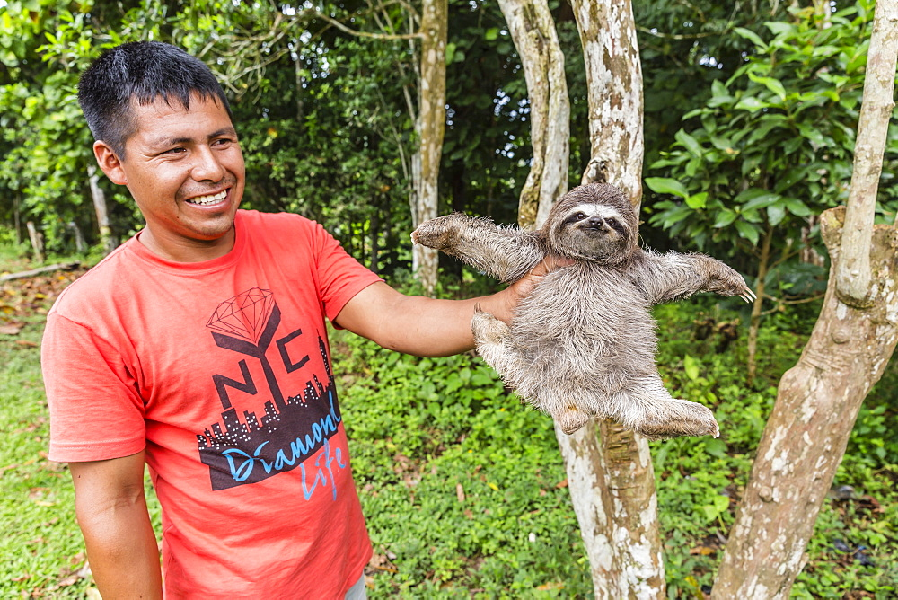 A man with his pet brown-throated sloth (Bradypus variegatus), San Francisco Village, Loreto, Peru, South America
