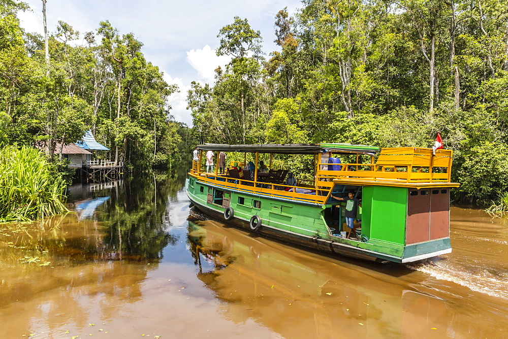 Klotok with tourists on the Sekonyer River, Tanjung Puting National Park, Borneo, Indonesia. - 1112-3675