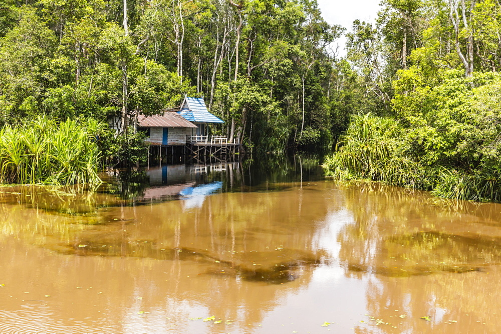 Ranger shack on the Sekonyer River, Tanjung Puting National Park, Kalimantan, Borneo, Indonesia, Southeast Asia, Asia