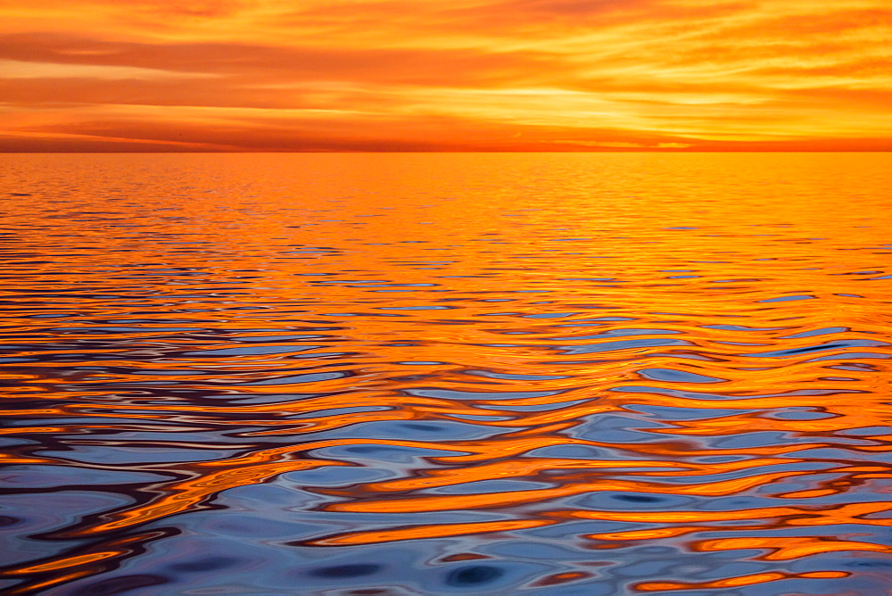 Beautiful sunset light reflected on a calm ocean near Isla San Marcos, Baja California Sur, Mexico, North America