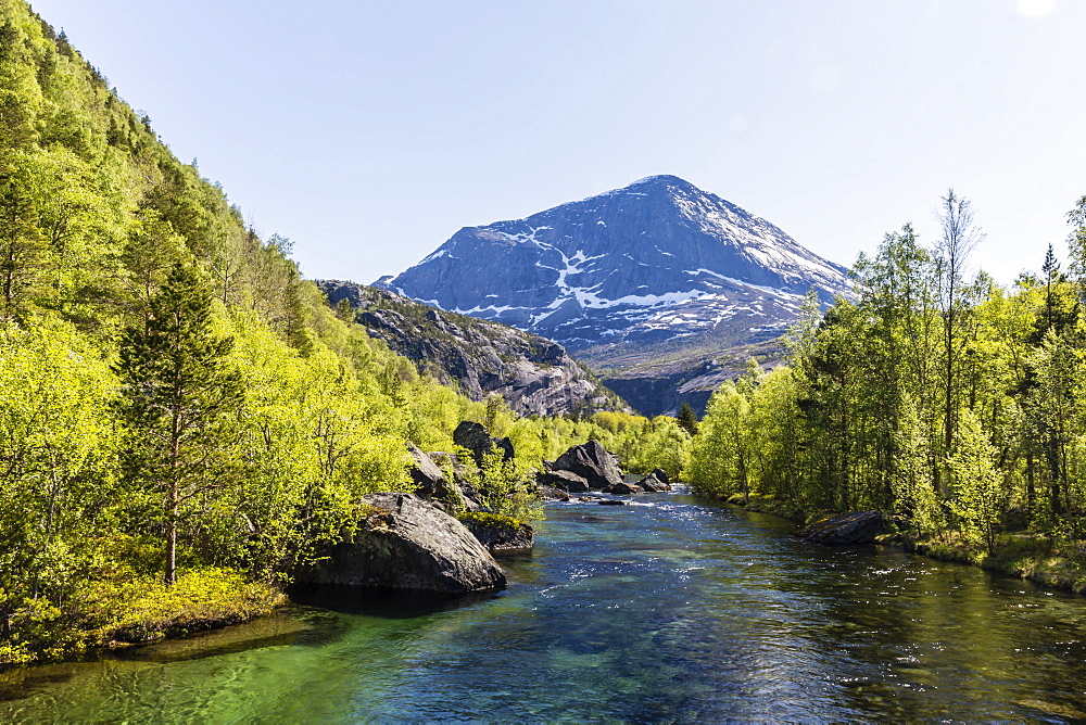 Ice melt river winding through secondary forest in Hellmebotyn, Tysfjord, Norway, Scandinavia, Europe