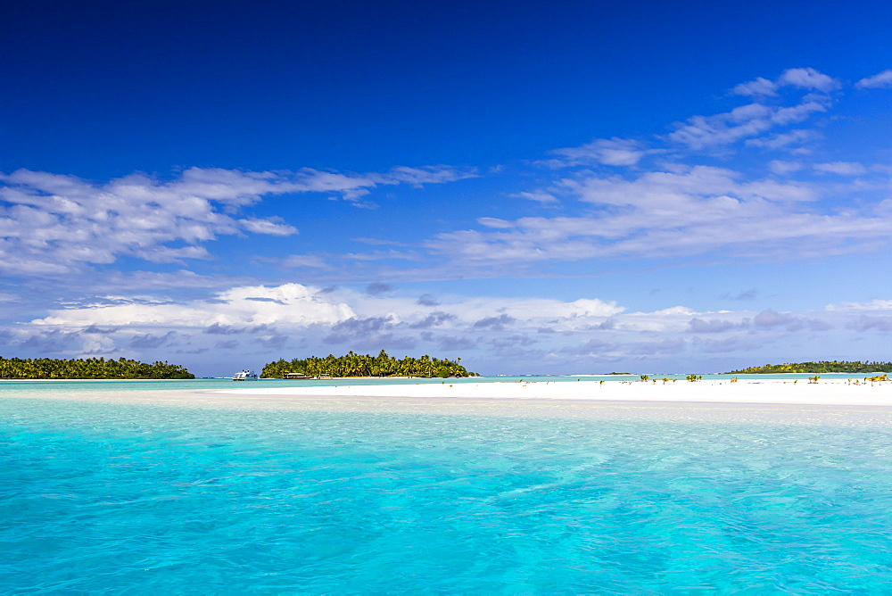 Coconut palm trees line the beach on One Foot Island, Aitutaki, Cook Islands.