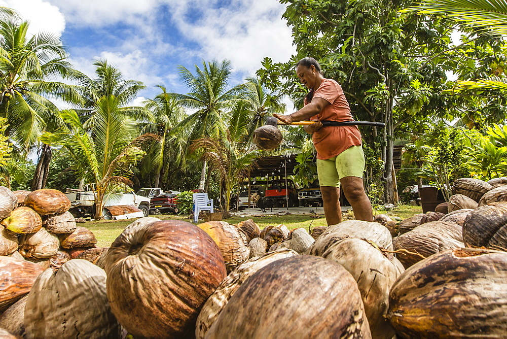 Woman splitting and drying coconuts to make copra in the town of Tapana, Niau Atoll, Tuamotus, French Polynesia, South Pacific, Pacific