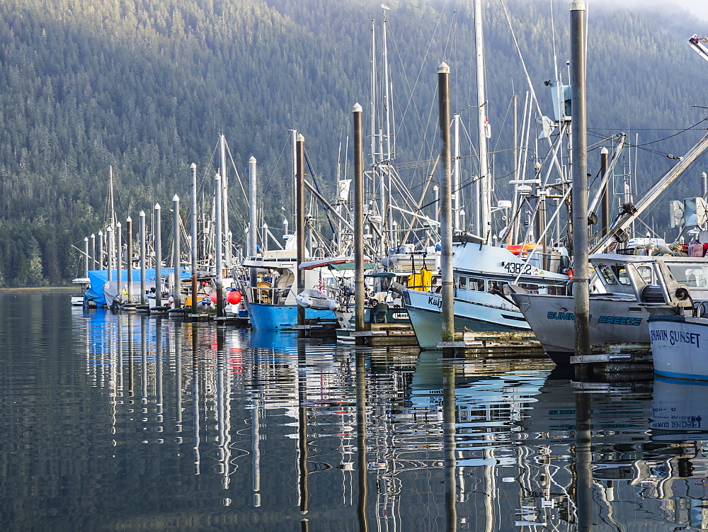 View of the commercial fishing fleet docked in the harbor at Petersburg, Southeast Alaska, USA.