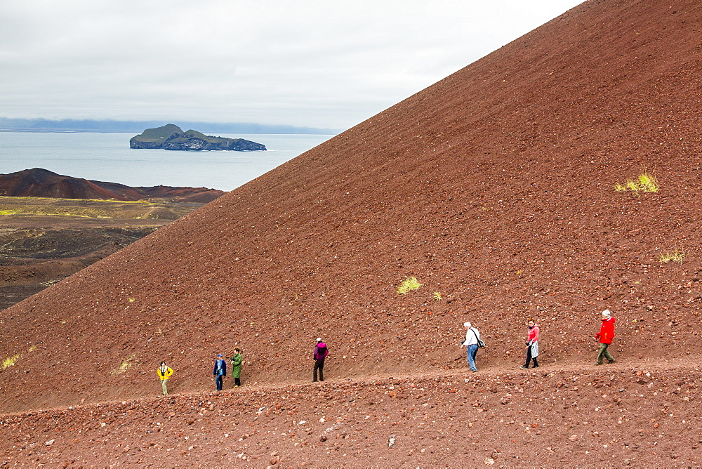 Hiking on recent lava flow on Heimaey Island, Iceland, Polar Regions