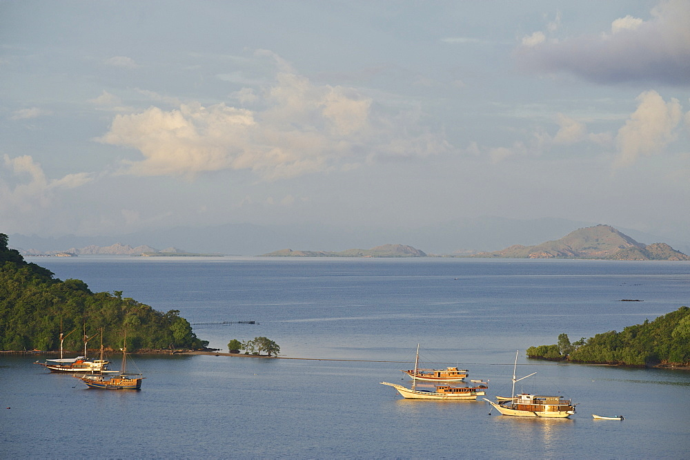 Early morning view above the harbour towards Komodo National Park, Labuhanbajo, West Flores, Nusa Tenggara, Lesser Sunda Islands, Indonesia, Southeast Asia, Asia