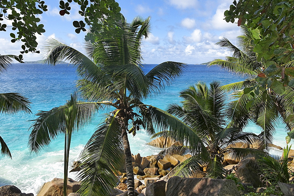 Anse Patates beach, La Digue, Seychelles, Indian Ocean, Africa
