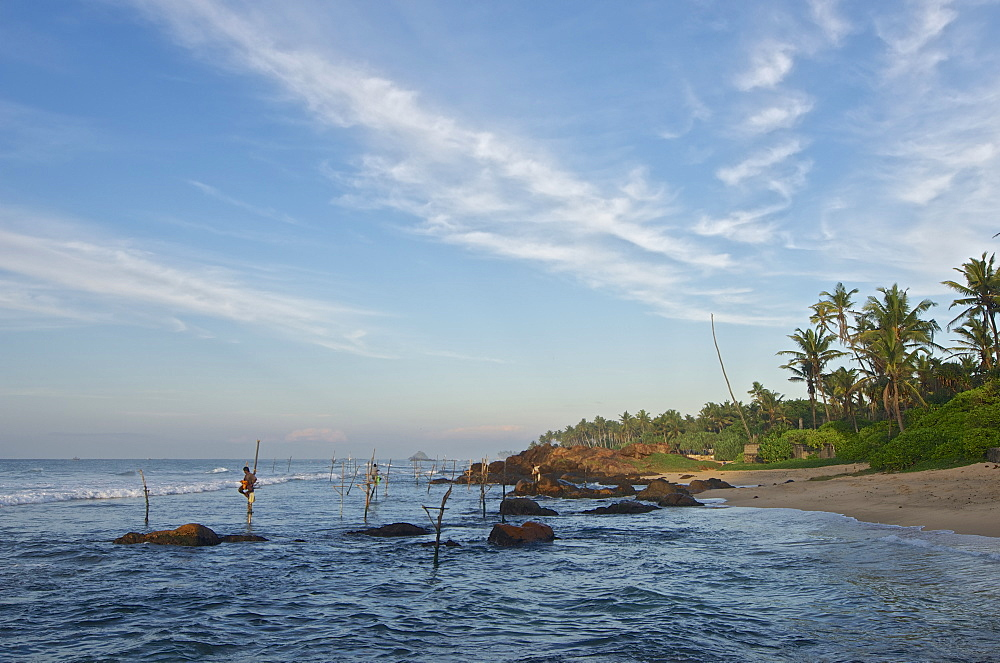 Stilt fishermen in the early morning in front of a rocky coastline near Weligama, South Sri Lanka