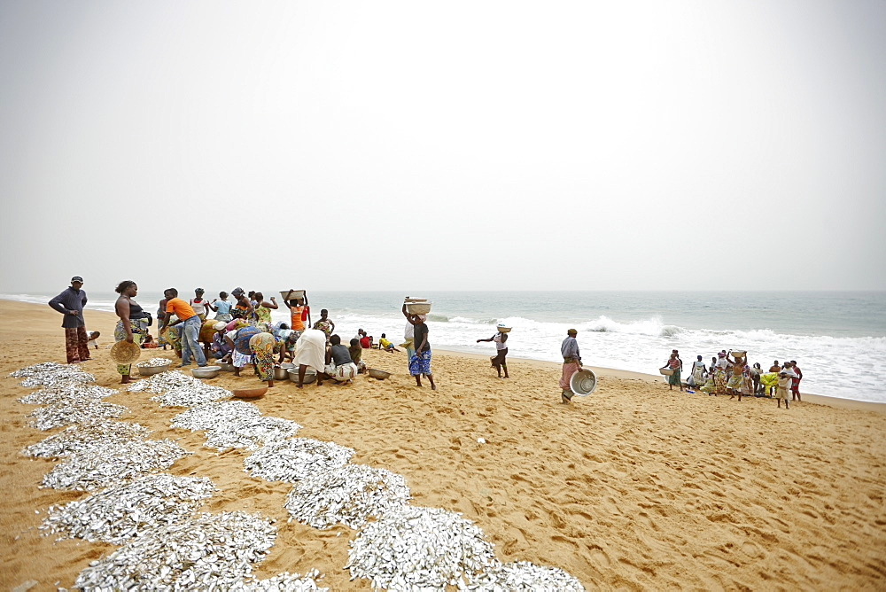 Woman and children selecting trawl fish catch at beach, Grand-Popo, Mono Department, Benin