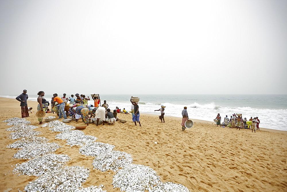 Woman and children selecting trawl fish catch at beach, Grand-Popo, Mono Department, Benin