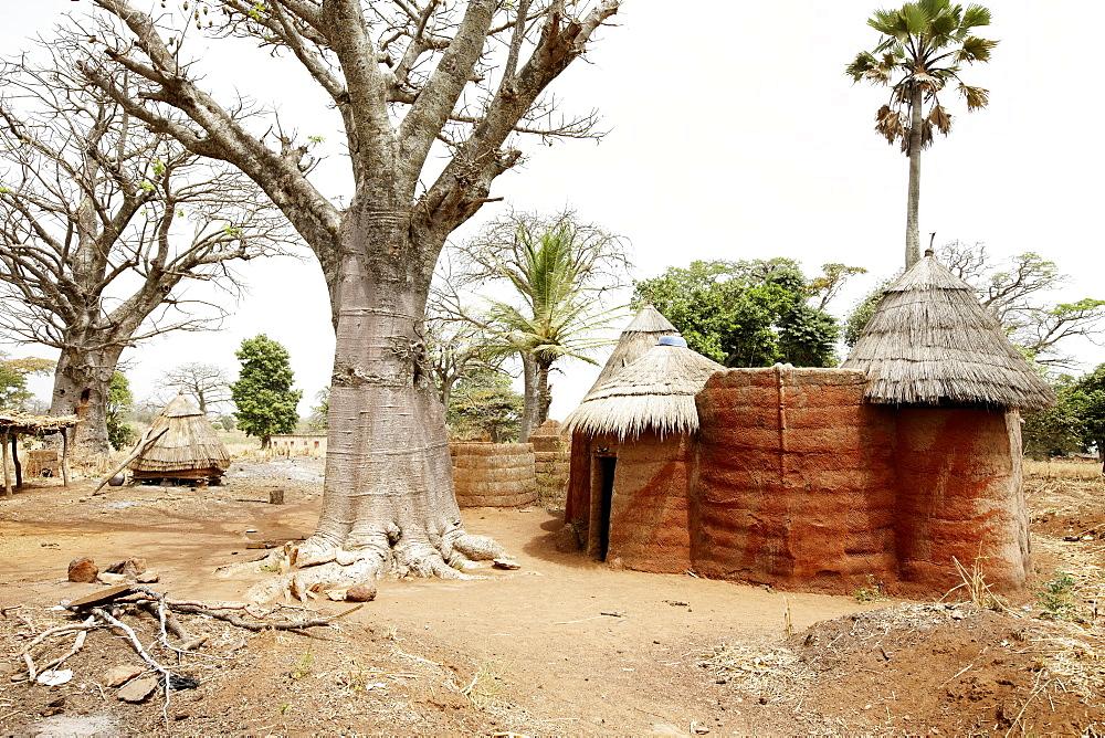Traditional loam house in the area of the Somba tribe, Koussoucoingou, Atakora Department, Benin