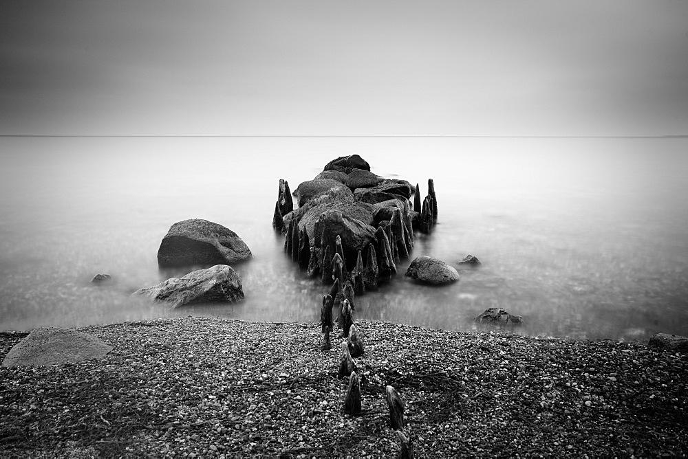Groynes and moss covered stones in the morning light, Buelk, Strande, Kiel Fjord, Schleswig-Holstein, Germany