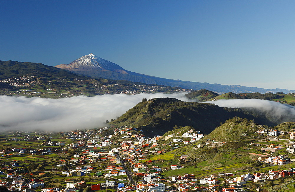 view from Mirador La Jardina, viewpoint, San Cristobal de La Laguna, town, Teide mountain with snow, 3718m, the island´s landmark, highest point in Spain, volcanic mountain, Tenerife, Canary Islands, Spain, Europe - 1113-101507