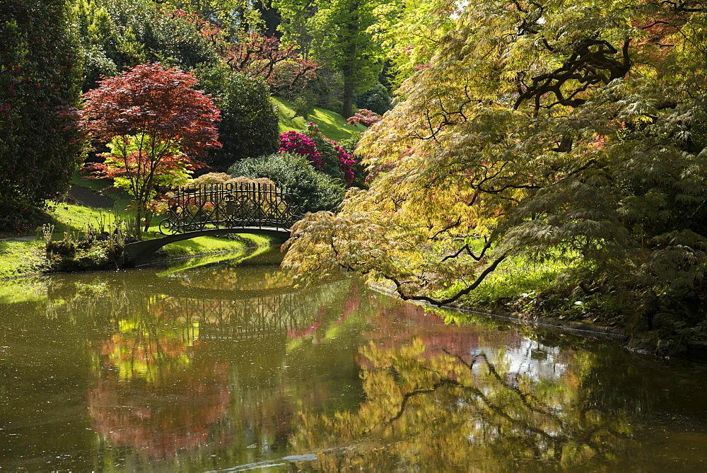 English style gardens of Villa Melzi, Bellagio, Lake Como, Lago di Como, Province of Como, Lombardy, Italy